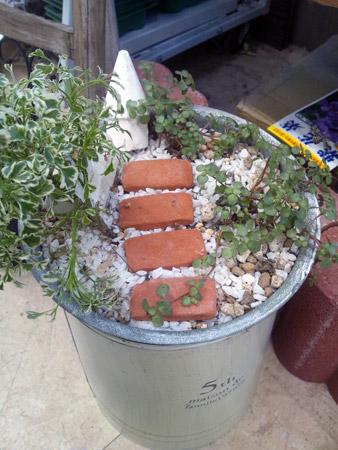バケツを使用したジオラマ風鉢植え