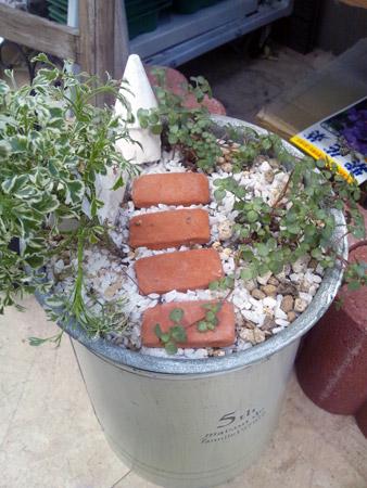 バケツを使ったジオラマのような鉢植え