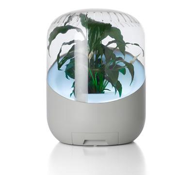 「ANDREA プラント空気清浄機」ホワイト