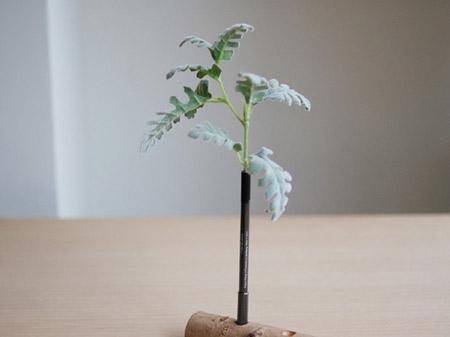 bonboog ボタニカルペン 草シリーズの写真