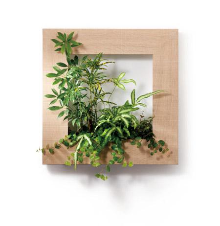 自然を切り取ったようにグリーンを壁に飾ることができる「マイギャラリー/my gallery R」